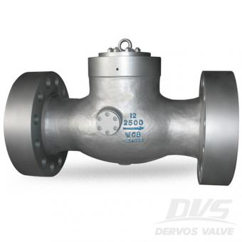 2500LB High Pressure Non Return Valve