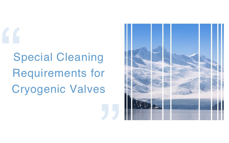 Special Cleaning Requirements for Cryogenic Valves